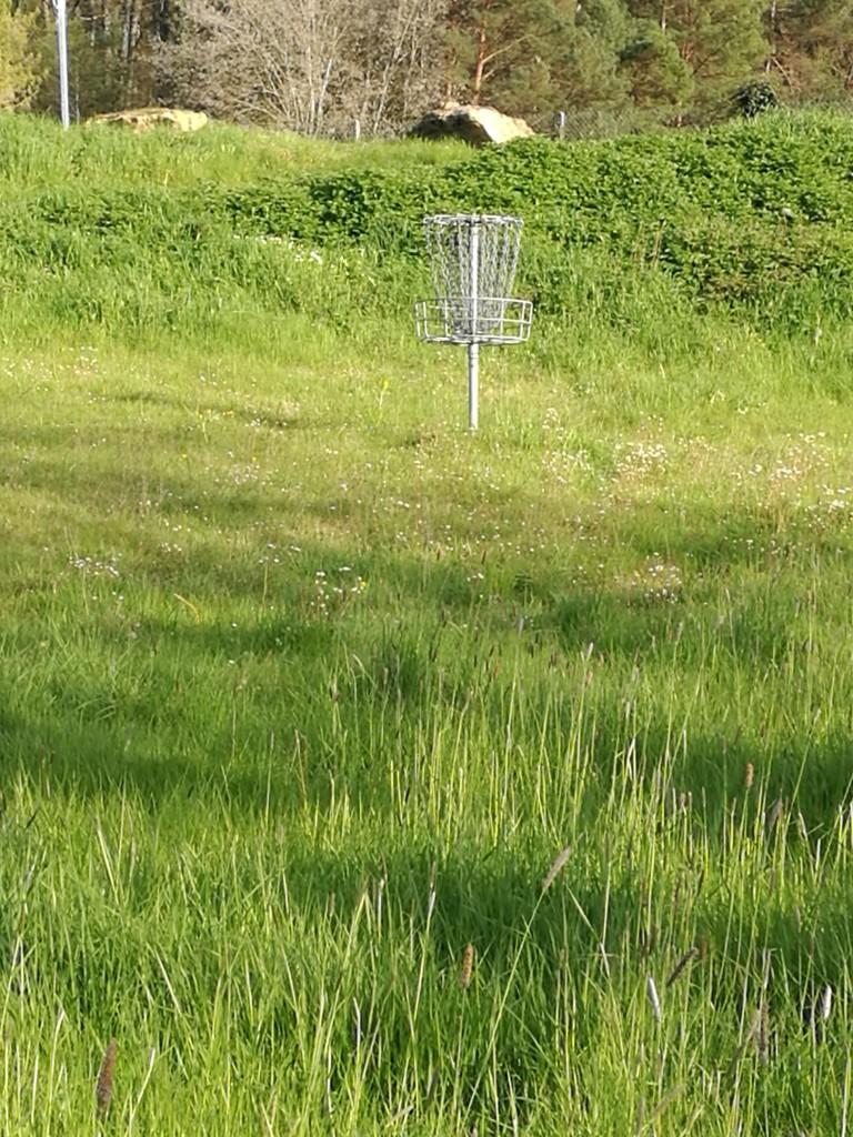Panier disc golf saint benoit la foret